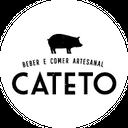 Cateto Pinheiros background